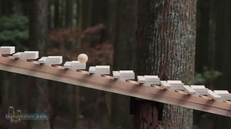 Xylophone Woodland Melody