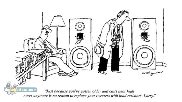 You might be an Audiophile